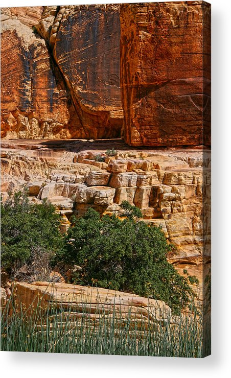 Red Rock Canyon Acrylic Print featuring the photograph Red Rock Canyon 3 by Chris Brannen