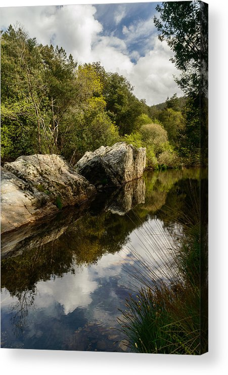 River Acrylic Print featuring the photograph River Reflections II by Marco Oliveira