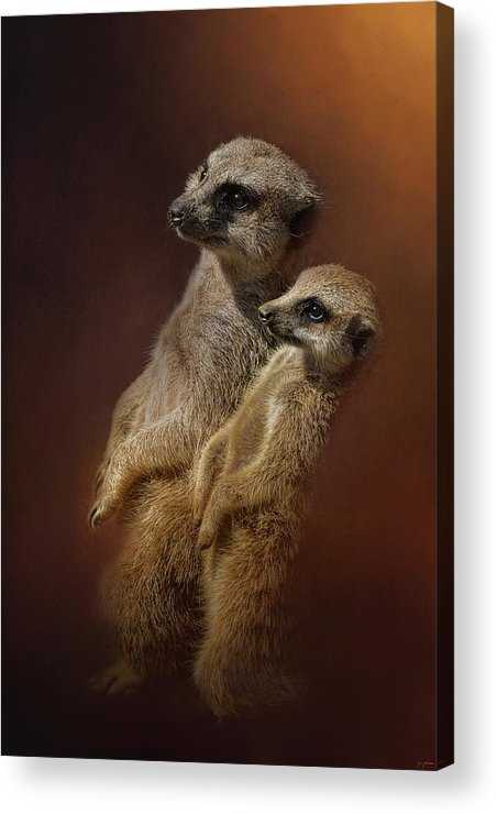 Jai Johnson Acrylic Print featuring the photograph Standing At Attention by Jai Johnson