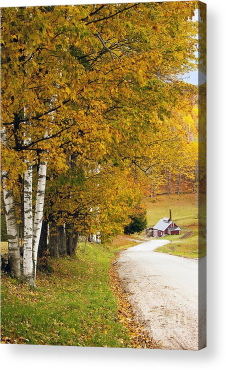 Autumn Acrylic Print featuring the photograph Sugar Mill Vermont by Brian Jannsen