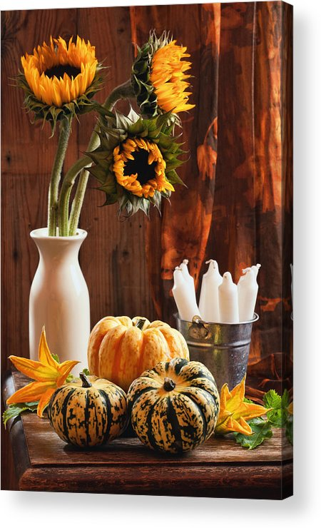 Pumpkin Acrylic Print featuring the photograph Sunflower And Gourds Still Life by Amanda Elwell