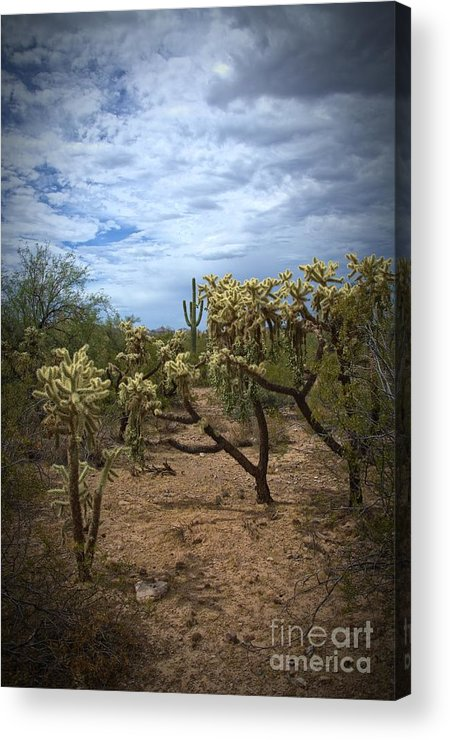 Landscape Acrylic Print featuring the photograph Superstitious Grounds by Richard Fernandez