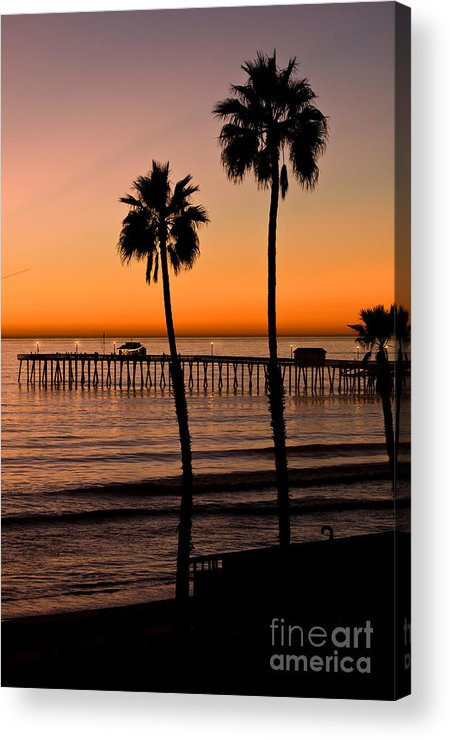 Seaweed Acrylic Print featuring the photograph T Street Pier San Clemente California From The Book My Ocean by Artist and Photographer Laura Wrede