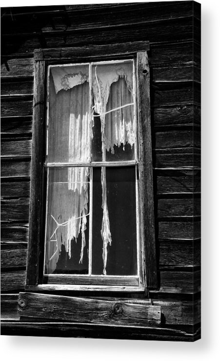 Black Acrylic Print featuring the photograph Tattered And Torn by Cat Connor