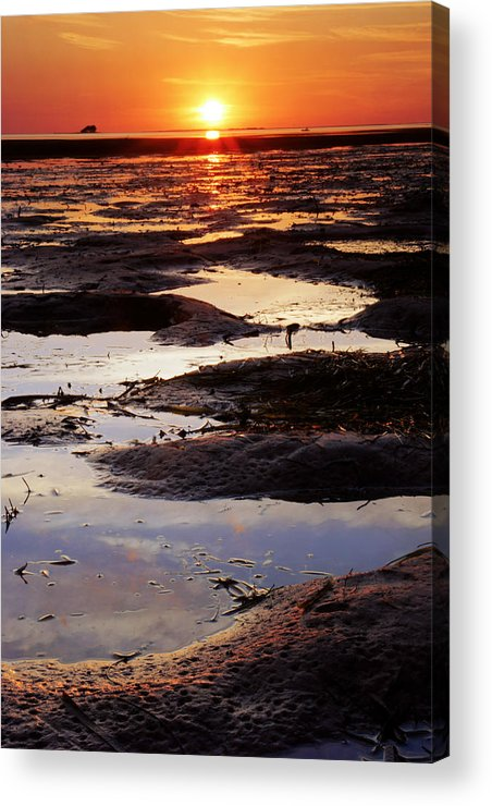 Crystal Beach Acrylic Print featuring the photograph The Sky In The Mud At Low Tide by Daniel Woodrum