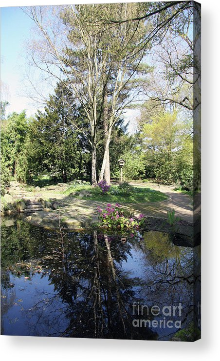 Trees Acrylic Print featuring the photograph Trees Reflection In The Pond by Christiane Schulze Art And Photography