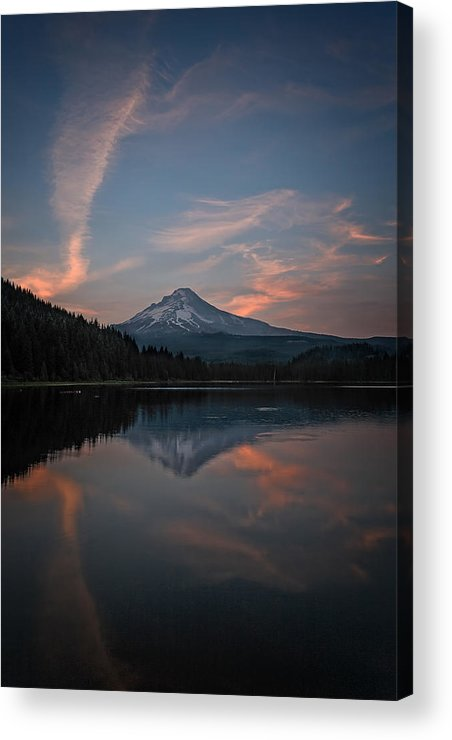 Trillium Twilight Acrylic Print featuring the photograph Trillium Twilight by Wes and Dotty Weber