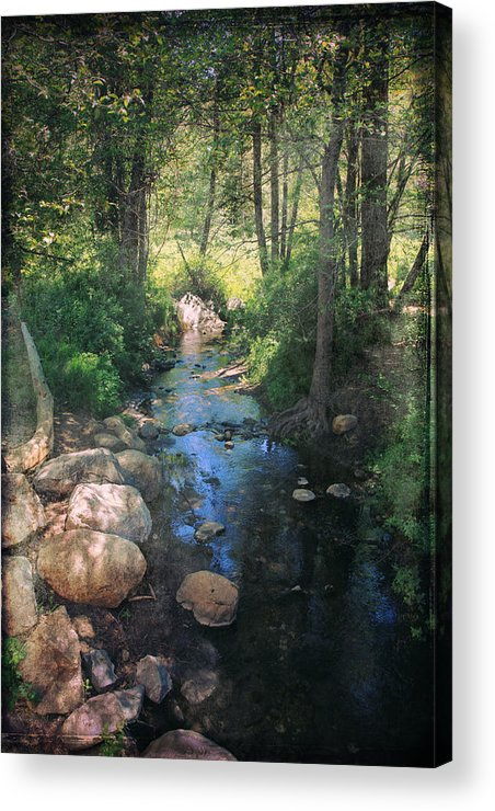 Idyllwild Acrylic Print featuring the photograph Until I Loved You by Laurie Search