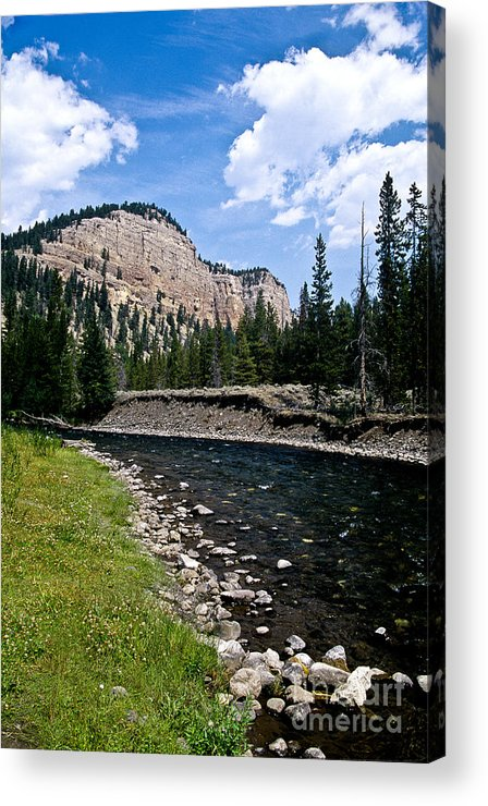 Landscape Acrylic Print featuring the photograph Upriver In Washake Wilderness by Kathy McClure