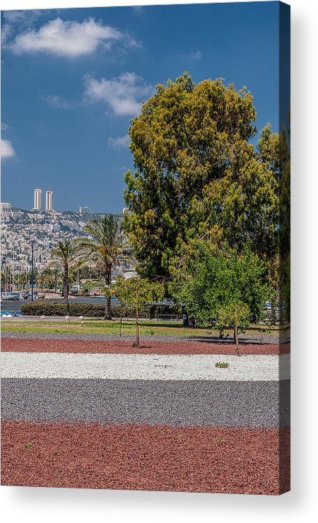 Middle East Acrylic Print featuring the photograph View To Haifa by Sergey Simanovsky