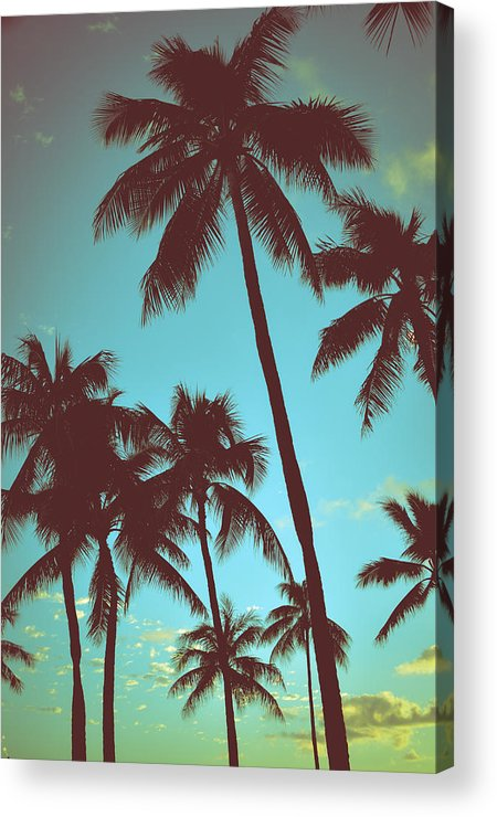 Aged Acrylic Print featuring the photograph Vintage Tropical Palms by Mr Doomits