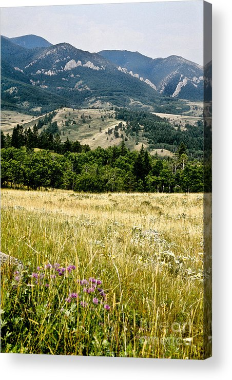 Wilderness Acrylic Print featuring the photograph Washake Wilderness by Kathy McClure