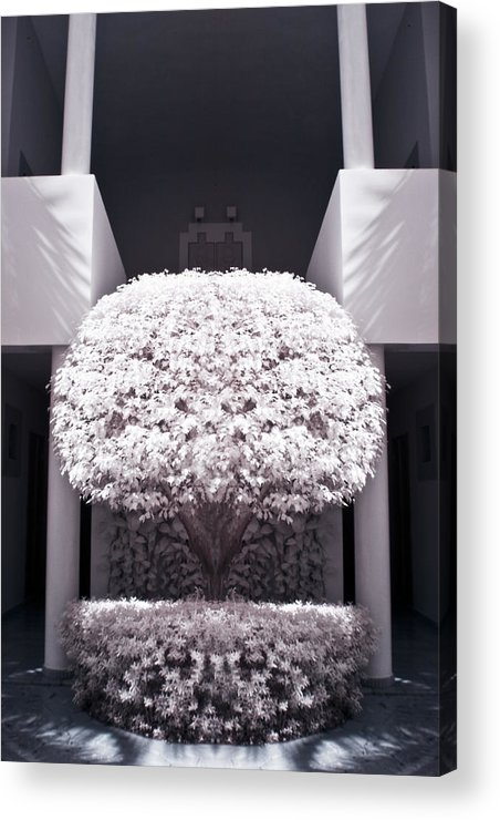 3scape Photos Acrylic Print featuring the photograph Welcome Tree Infrared by Adam Romanowicz
