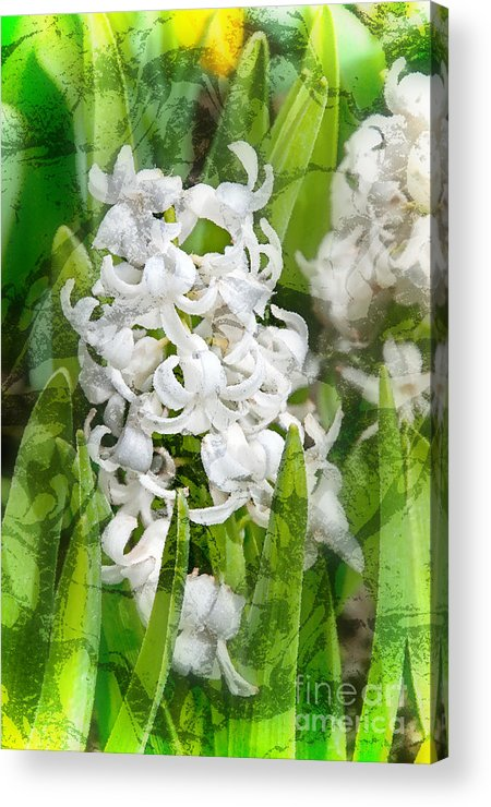 Flowers Acrylic Print featuring the photograph White Hyacinth Flowers Digital Art by Valerie Garner