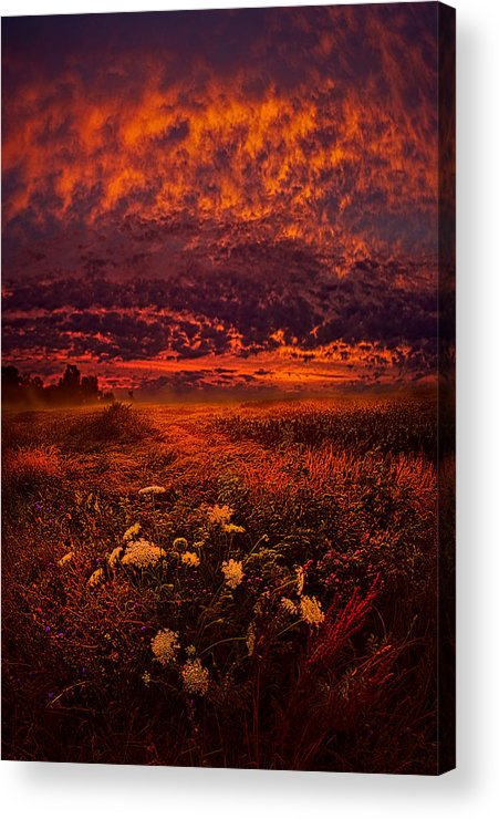 Bestoftheday Acrylic Print featuring the photograph Wisconsin Twilight by Phil Koch