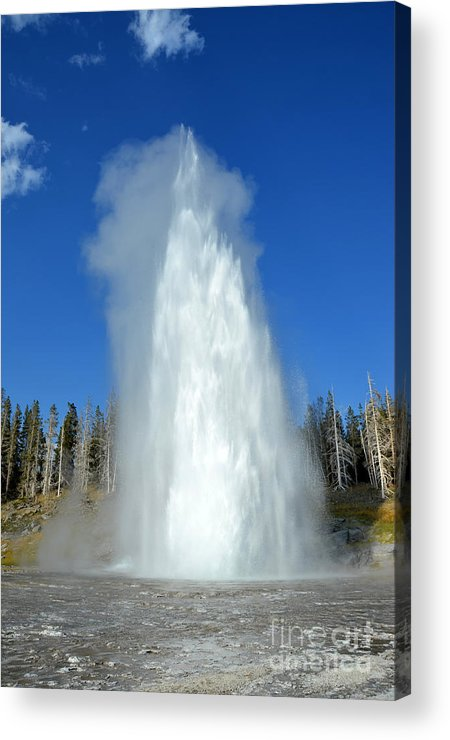 Yellowstone National Park Acrylic Print featuring the photograph Yellowstone Grand Geyser Shooting Up High by Debra Thompson