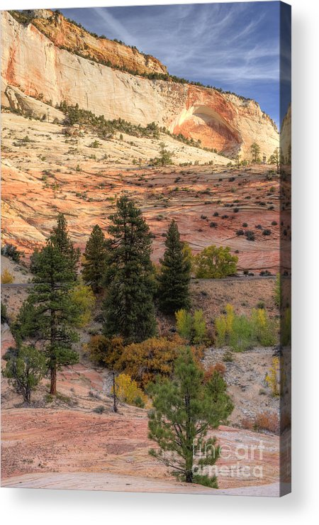 Hdr Acrylic Print featuring the photograph East Zion Canyon Hdr by Sandra Bronstein