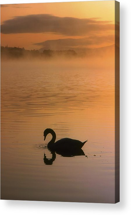 Back Lit Acrylic Print featuring the photograph Lough Leane, Lakes Of Killarney, Co by The Irish Image Collection