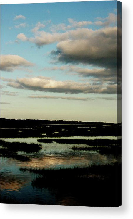 Lowcountry Acrylic Print featuring the photograph Lowcountry Marsh Front by David Paul Murray