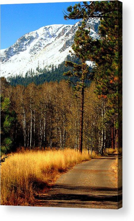 Sierras Acrylic Print featuring the photograph Mountain Road by Lynn Bawden