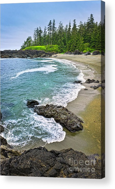 Pacific Acrylic Print featuring the photograph Coast Of Pacific Ocean In Canada by Elena Elisseeva