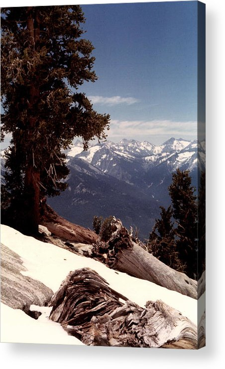 Mountains Acrylic Print featuring the photograph Alta Peak by Christina Solstad