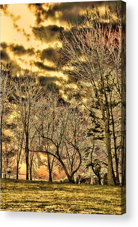Abstract Woods Park Clouds Nature Trees Acrylic Print featuring the digital art Another Smiling Skull In The Sky by Harmonie Sites