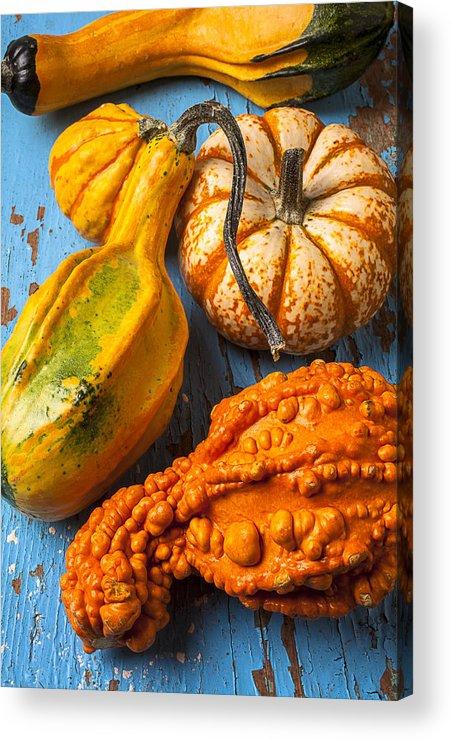 Autumn Gourd Acrylic Print featuring the photograph Autumn Gourds Still Life by Garry Gay