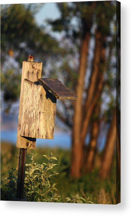 Birdhouse Acrylic Print featuring the photograph Birdhouse 23 by Andrew Pacheco