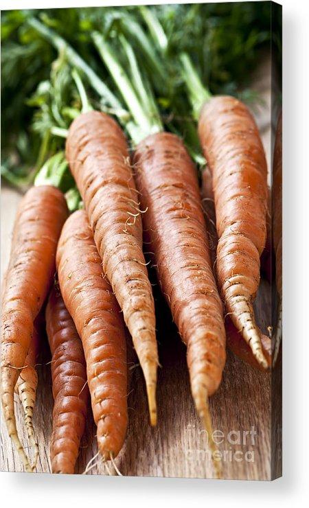 Carrots Acrylic Print featuring the photograph Carrots by Elena Elisseeva