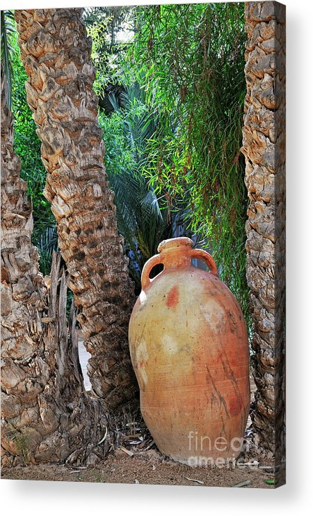 Freshness Acrylic Print featuring the photograph Clay Jar By Palm Tree by Sami Sarkis