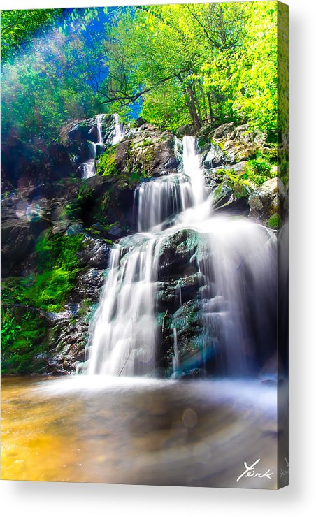 Landscape Acrylic Print featuring the pyrography Colorful Stream by Shane York