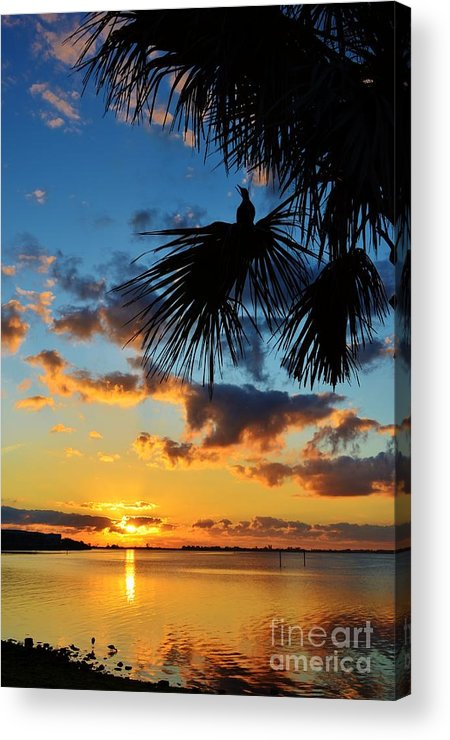 Sunrise Acrylic Print featuring the photograph Crow In The New Year by Lynda Dawson-Youngclaus