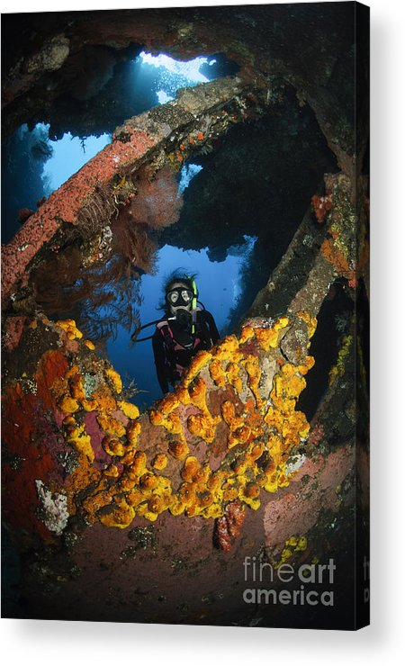 Liberty Wreck Acrylic Print featuring the photograph Diver Explores The Liberty Wreck, Bali by Todd Winner