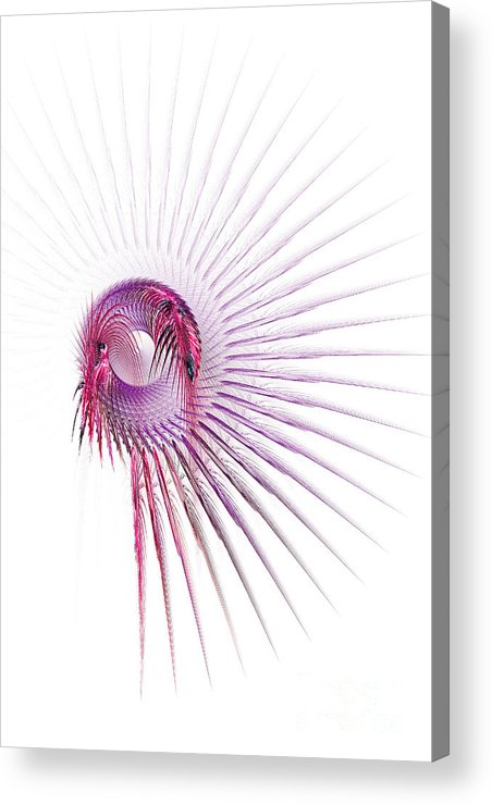Fractal Acrylic Print featuring the digital art Dreamcatcher by Ann Garrett