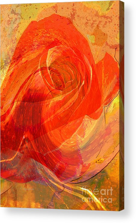 Rose Acrylic Print featuring the photograph Fanciful Flowers - Rose by Regina Geoghan