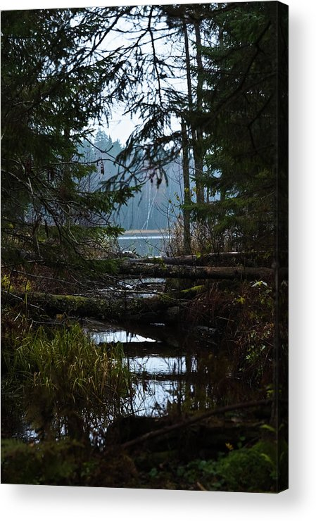 Autumn Acrylic Print featuring the photograph Forest Lake by Michael Goyberg