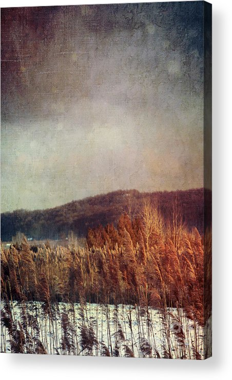Abandoned Acrylic Print featuring the photograph Frosty Field In Late Winter Afternoon by Sandra Cunningham