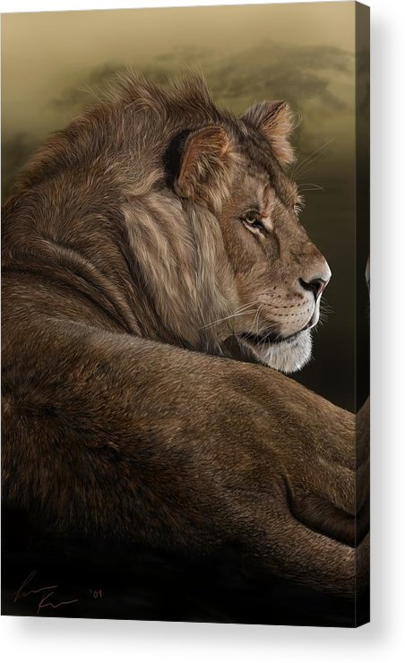 Lion Acrylic Print featuring the digital art Intent by Laura Klassen