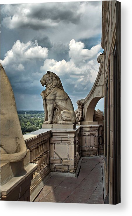 Atlanta Acrylic Print featuring the photograph King Of The Beasts In The Land Of The Braves by Farol Tomson