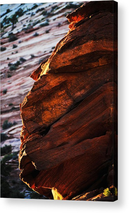 Little Brother Acrylic Print featuring the photograph Little Brother by Skip Hunt