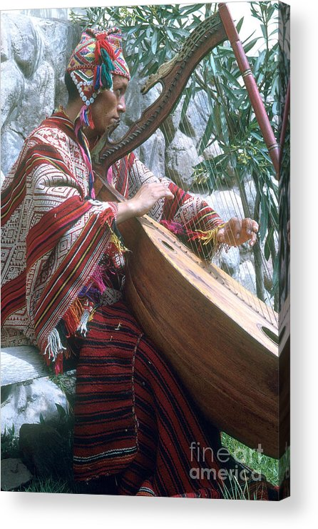 Lute Player Acrylic Print featuring the photograph Lute Player by Photo Researchers, Inc.