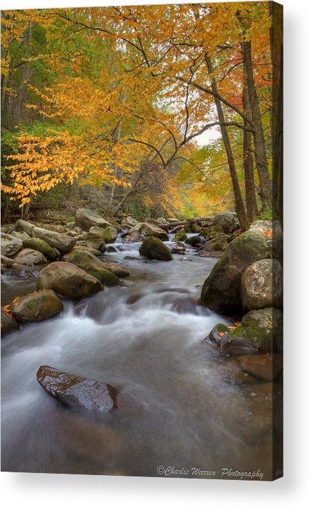 Great Smoky Mountains Acrylic Print featuring the photograph Mid Stream II by Charles Warren