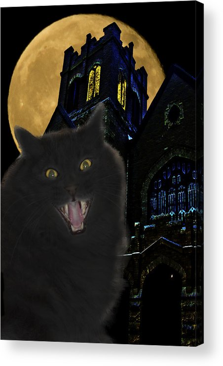 Black Cat Acrylic Print featuring the photograph One Dark Halloween Night by Shane Bechler