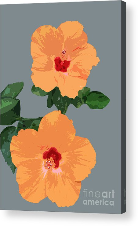 Flower Acrylic Print featuring the digital art Orange Hibiscus Twins by Karen Nicholson