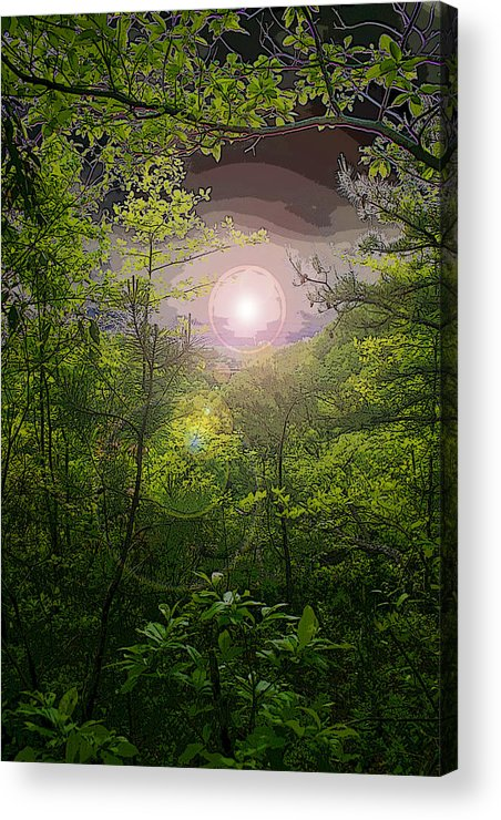 Pm Acrylic Print featuring the photograph Paradise At Dawn by Nina Fosdick