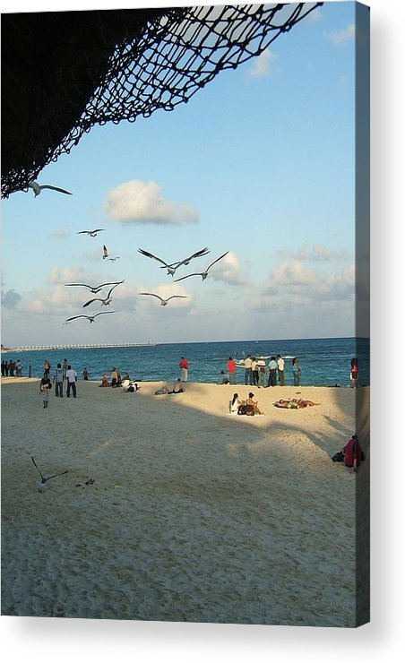 Playa Del Carmen Acrylic Print featuring the photograph Playing In Playa by Patricia Williams