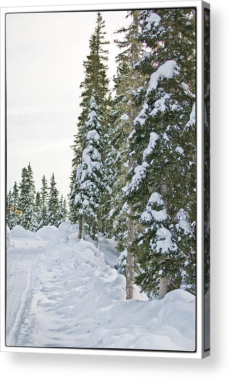 Mountain Acrylic Print featuring the photograph Powdery Snow Path by Lisa Spencer
