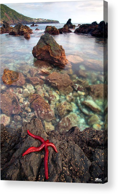 Landscape Acrylic Print featuring the photograph Red Pepper by Rui Silveira