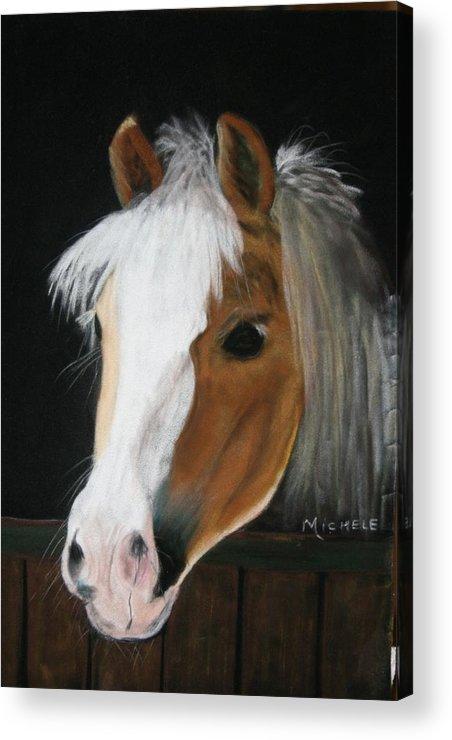 Pony Acrylic Print featuring the pastel Shetland Pony by Michele Turney
